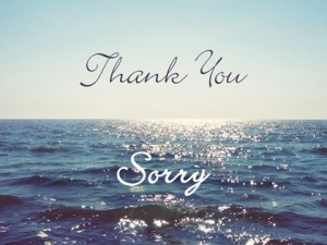 Thank you & Sorry